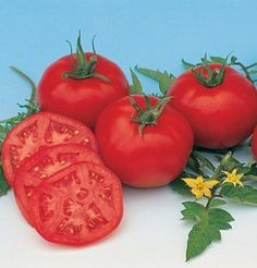 Fedco seeds organic heirloom seeds promo code or discount coupon tomato moskvich red 50 organic heirloom seeds by davids garden seeds fandeluxe Images