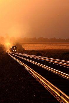 Golden train trail
