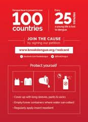Image result for dengue infographics