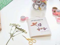 Tutoriale DIY: Cómo hacer una prensa de flores para herbario vía DaWanda.com