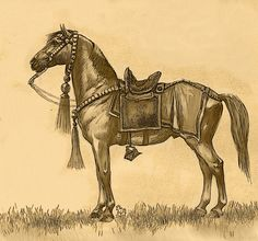 central asian horse tack - Google Search