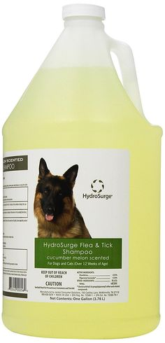 Oster HydroSurge Flea and Tick cat Shampoo * Check this awesome image  : Cat Grooming