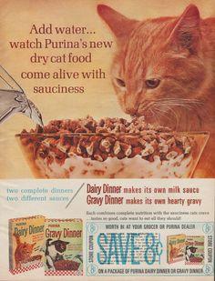 Purina Cat Food Vintage Magazine Advertisement (1964)