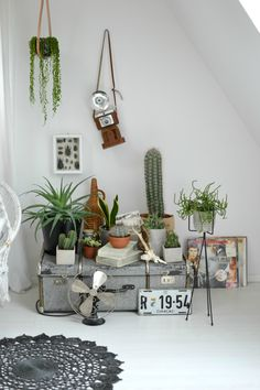 Plant Styling with Vintage Details | Get the Look! Pimp Your Room