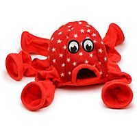 Marshall Pet Products Ferret Octo-Play in Red