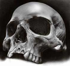 Skull Tattoo Design, Skull Design, Skull Tattoos, Body Art Tattoos, Airbrush Skull, Real Skull, Skull Reference, Skull Anatomy, Skeleton Drawings