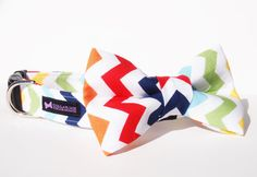 Chevron Dog Collar Bow Tie Set  Rainbow by CollarMeCharming, $24.95