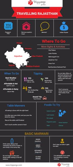 Get complete information about sightseeing and tourist destinations in Rajasthan travelling infographic.