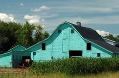 Guessing turquoise is not the original paint job on this old barn.