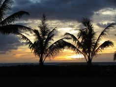 Our couple's beautiful wedding sunset at Paradise Cove. Contact Hawaii Weddings by Tori Rogers www.hawaiianweddings.net