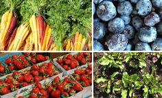 Jamie Oliver's Food Revolution- In season fruit & veg