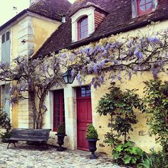 I think you'd need the French farm house to go along with the wisteria