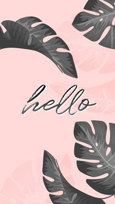 Phone Wallpaper Quotes Red 45 New Ideas Wallpaper Pastel, Hello Wallpaper, Wallpaper Tumblr Lockscreen, Flamingo Wallpaper, Phone Wallpaper Images, Tropical Wallpaper, Wallpaper Iphone Disney, Iphone Background Wallpaper, Aesthetic Iphone Wallpaper