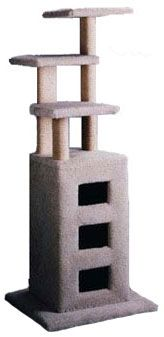 """Large Cat Condo  - Height 61""""  - Made of plywood and kiln dried fir  - Carpet 50oz or better  - Base 24""""x24""""  - Perches 14""""x14""""  - The inside bottom of the condo is 14"""" x14"""". There are 2 shelves inside condo not including the bottom itself. That means it has 3 levels. Each shelf is about 71/2x14. As the shelves do not cover the whole width of the inside the cat can go in one hole and come out thru another.  - The holes are about 6"""" x 7"""""""