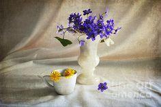 Welcome Spring by Randi Grace Nilsberg