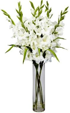 pretty white gladiola.......simple and stunning