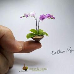 www.ideiasecoisas.com  Phalaenopais orchid - handmade- cold porcelain. 1:12 scale.
