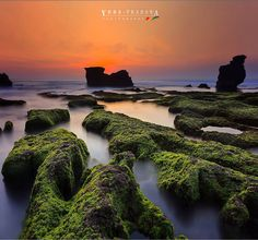 ____________________________________  MOSSY SUNSET... ____________________________________  Clouds come floating into my life no longer to carry rain or usher storm but to add color to my sunset sky.  Rabindranath Tagore   ____________________________________  Splendid sunset at Melasti beach Bali Indonesia   Coffee session with my inspiring friends:  @chandra_chung  @okie_haryadi  @alwani26  @bruri  Have a wonderful day my friends!   ______________________________________ by yuda_pradana