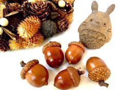 北海道どんぐり*森の宝物|チャーム|kaori|ハンドメイド通販・販売のCreema