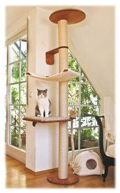 How to create an interesting DIY cat tree? - Cat tree can serve a beautiful decoration for those who are having cats in their homes. If you don`t have one, then you should think of creating one f. Cool Cat Trees, Diy Cat Tree, Cat Gym, Cat Jungle Gym, Cat Magazine, Cat Towers, Cat Shelves, Cat Scratching Post, Cat Enclosure