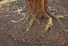 James-Brunt-Natural-Materials-Land-Art-England