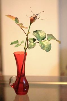 Vase vintage (42 years ago) × rose hip