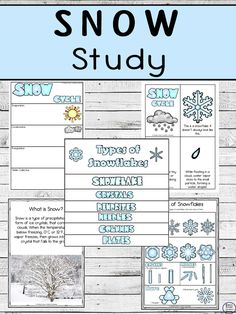 Enjoy learning about Snow, and the Snow Cycle with this awesome Snow Study that includes worksheets and a flip book about different types of snowflakes. Snow Activities, Teaching Science, Kindergarten Activities, Rainforest Activities, Preschool Lessons, Preschool Worksheets, Science Lessons, Snowflakes For Kids, Cycle For Kids