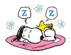 Snoopy Song, Goodnight Snoopy, Snoopy Quotes, Snoopy Images, Snoopy Pictures, Cute Good Night, Good Night Gif, Snoopy Videos, Snoopy Comics