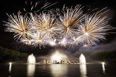 Tous les samedis soirs d'été, 2h30 de promenade magique dans les somptueux jardins du Château de Versailles mis en eaux, en musique et en lumière.
