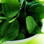 spinach http://www.studio27fashion.com/2014/03/20/how-to-get-rid-of-winter-pounds-by-eating-more-top-25-foods-that-increase-weight-loss-fast/
