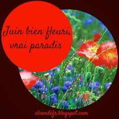 Le dicton du mois de juin et la Normandie