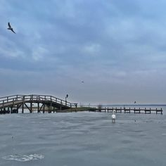 Twilight Schwanparty am Meer.  #steinhude #steinhudermeer  #runkeeper #7k  #runtastic  #nature #sky #twilight #clouds #beauty #light #cloudporn #weather #photooftheday #skylovers #dusk #weather #mothernature #sea #seascapes #pier #swan #seagull
