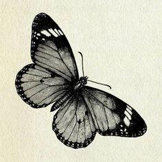 Tattoo Mandala Butterfly Drawings Ideas For 2019 Bild Tattoos, Love Tattoos, Beautiful Tattoos, New Tattoos, Skull Tattoos, Butterfly Mandala, Butterfly Drawing, Butterfly Tattoos, Tattoos Partner