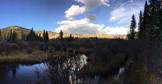 Fall Splendor #colorfulcolorado #ColoradoLove #colorado #fall #panorama #earth #air #sky #clouds #water #nature #naturelovers #peace #perfection #latergram