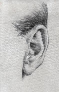 Pencil drawing of ear drawings Source by ndmrl Anatomy Sketches, Anatomy Drawing, Anatomy Art, Pencil Art Drawings, Realistic Drawings, Art Drawings Sketches, Pencil Sketching, Charcoal Drawings, Portrait Sketches