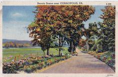 FALL Roadway Near Coraopolis Pennsylvania -Beautiful old 1933 Linen Postcard