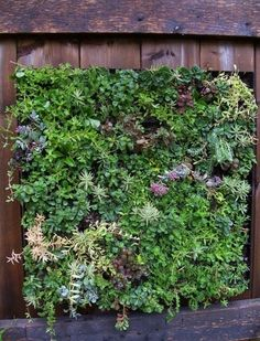 Friendly little Vertical Garden by pioneer Patrick Blanc                                 Somebody wants vertical gardens in their building, ...