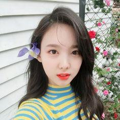 Best 11 Twice Kpop girl group Nayeon Kpop Girl Groups, Korean Girl Groups, Kpop Girls, Korean Group, Extended Play, Mamamoo, 2ne1, K Pop Idol, Twice Once