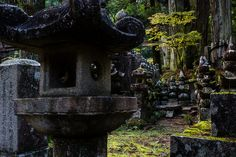 Stone Lantern by João Maia  The buddhist cemetery of Koyasan was founded 1200 years ago and features ancient tombs of samurai lords, priests and common people, among century old japanese cedar trees. A walk in this place is truly a spiritual...