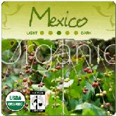 Natural Organic Mexican Fair Trade Gourmet Coffee Beans are delicately acidic delivering a light to medium bodied cup of coffee. Organic Coffee Beans, Fair Trade Coffee, Volcanoes, Weather Conditions, Coffee Cups, Conditioner, Mexico, Tropical, Deep
