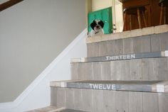 DIY Stair redo - I love the idea for the stair skirt! I need to do that!