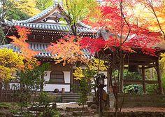 It's the Choraku-ji Temple of Kyoto.