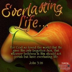 ♥ Remember His LOVE... John 3:16 ♥