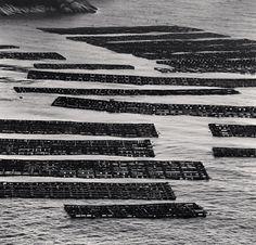 Abalone Farms, Heuksan-do, Shinan, South Korea, 2012 by Michael Kenna