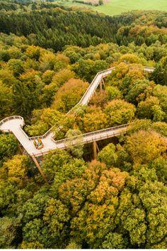 Einen Spaziergang in den Baumkronen von Nordrhein Westfalen sollte sich kein Naturliebhaber entgehen lassen. Auf dem Baumwipfelpfad im Naturerlebnispark Panarbora können Besucher die Natur hoch über den Wipfeln des Bergischen Landes erleben. © Tourismus NRW e.V.