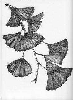 Leaves by Cecilia Adorio, via Behance