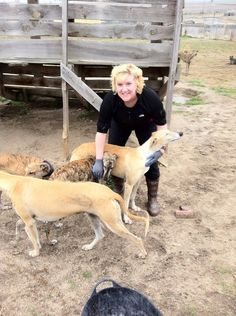 Margie Easter with the Scooby galgos. Doesn't get any better than this! :-)