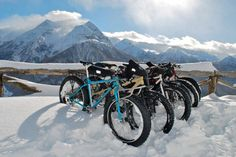 fat bike taly
