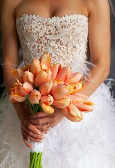 Alright sooo my favorite flowers are tulips and I would absolutely LOVE a bouquet of them on the wedding day. The bodice of this dress is sooo beautiful and delicate Tulip Bouquet Wedding, Wedding Flowers, Wedding Dresses, Wedding Mandap, Wedding Receptions, Wedding Colors, Spring Wedding, Dream Wedding, Wedding Day