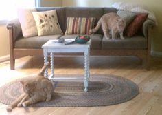 Pet Resistant, Cat Or Dog Friendly Furniture: Sofas And Chairs